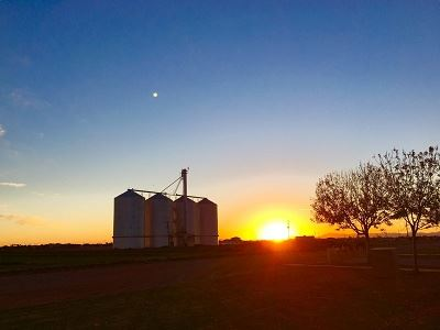 Grain Silos at Sunset