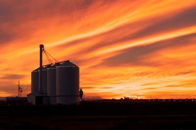 Grain Silos Silhouetted by the Setting Sun