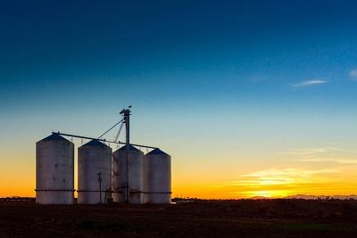 Four Grain Silos at Dusk